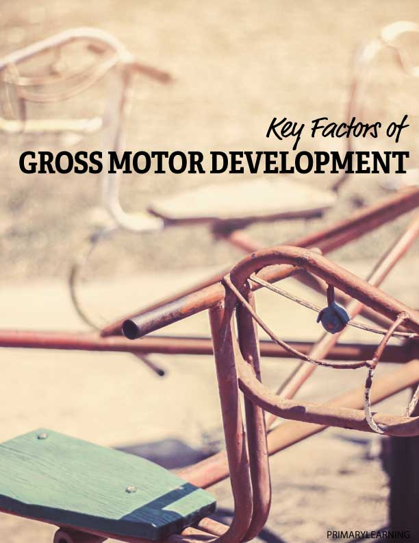 Key Factors Of Gross Motor Development