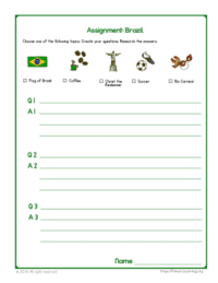 brazil resources ks2