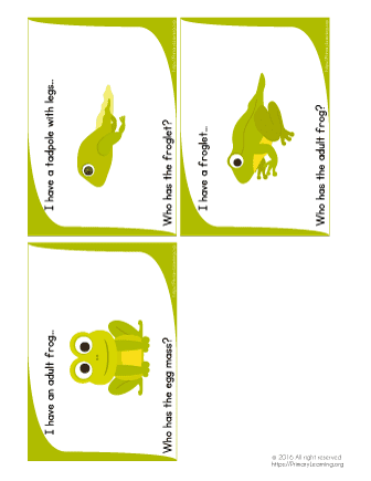 frogs life cyle