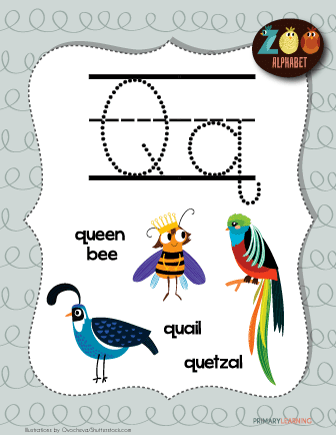 animal with letter q letter q animals printable poster primarylearning org 4782