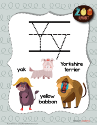 letter y animals