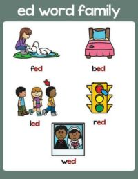 ed word family anchor chart