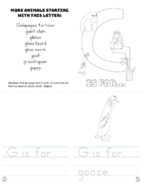 letter g printable book