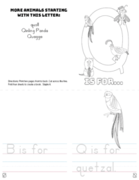 letter q printable book
