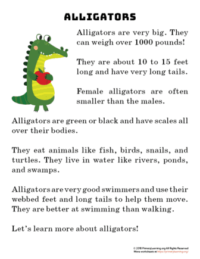 alligator reading passage