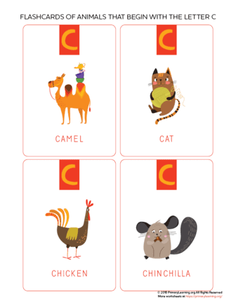 animals that begin with the letter c