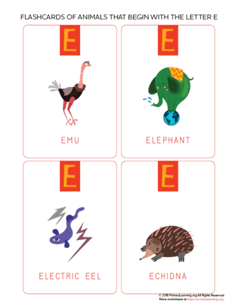 animals that begin with the letter e