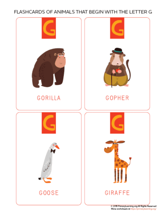 animals that begin with the letter g
