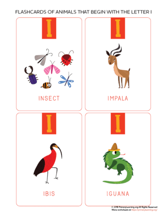 animals that begin with the letter i