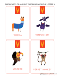 animals that begin with the letter v