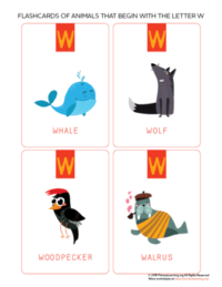animals that begin with the letter w