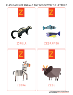 Flashcards Of Animals That Begin With The Letter Z