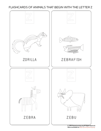 animals that begin with the letter z