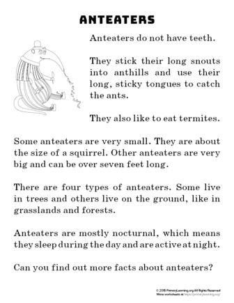 anteater reading passage