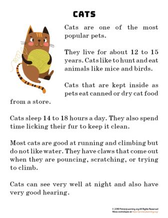 cat reading passage