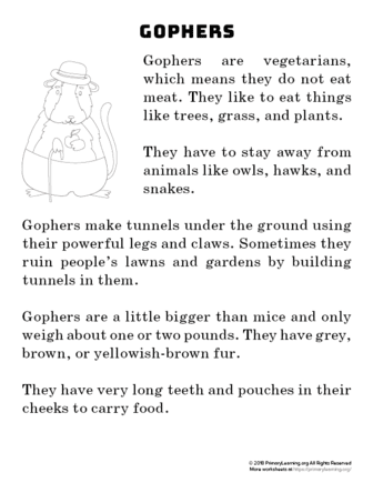 gopher reading passage