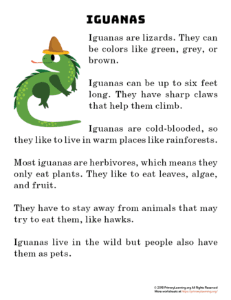 iguana reading passage