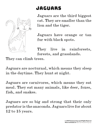 jaguar reading passage