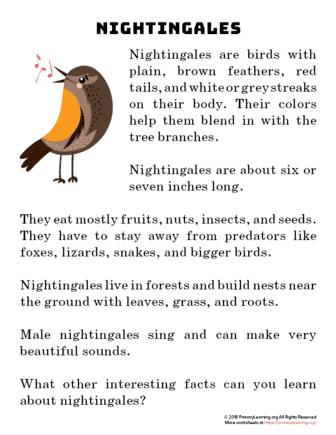 nightingale reading passage