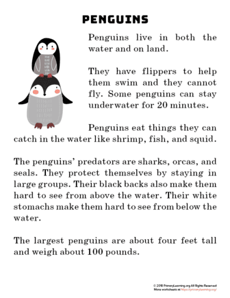 penguin reading passage