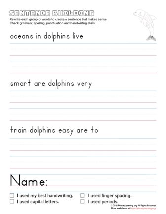 sentence building dolphin