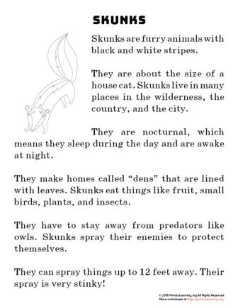 skunk reading passage