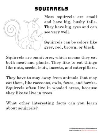 squirrel reading passage