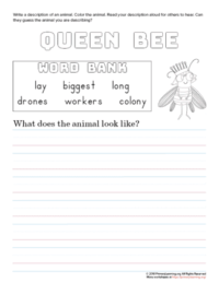 tell about queen bee