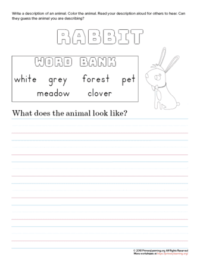 tell about rabbit