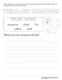 tell about yellow baboon