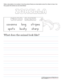 tell about zorilla