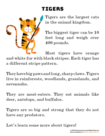 Tiger Reading Passage | PrimaryLearning.org