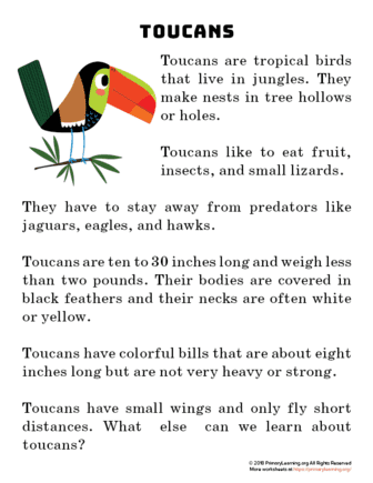 toucan reading passage