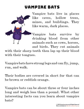 vamapire bat reading passage