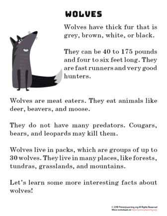 wolf reading passage