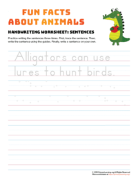 sentence writing alligator