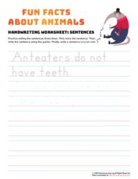 sentence writing anteater
