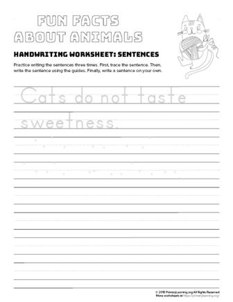 sentence writing cat