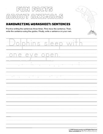 sentence writing dolphin