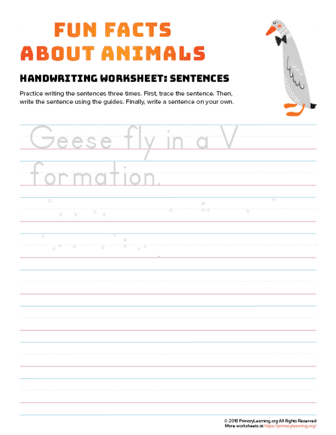 sentence writing goose