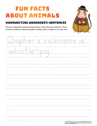 sentence writing gopher
