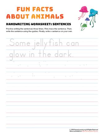 sentence writing jellyfish