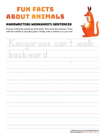 sentence writing kangaroo