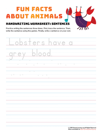 sentence writing lobster
