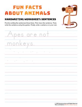 sentence writing monkey