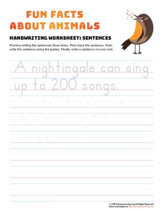 sentence writing nightingale