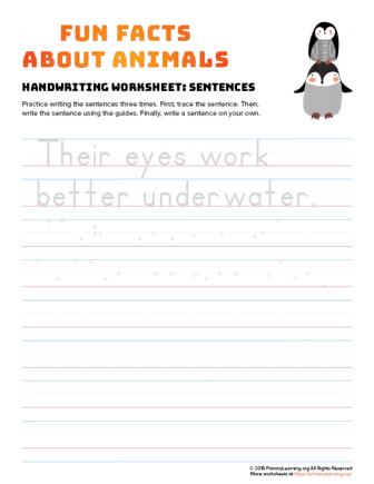 sentence writing penguin