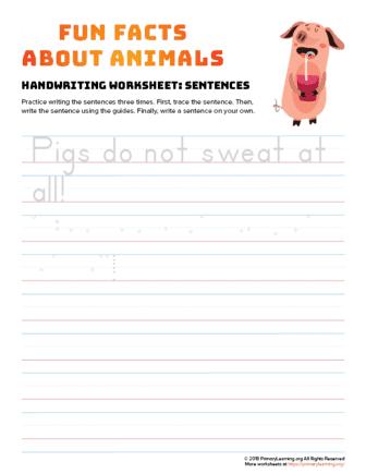 sentence writing pig