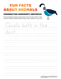 sentence writing quail