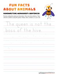 sentence writing queen bee